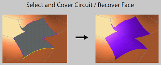 Cover Circuit